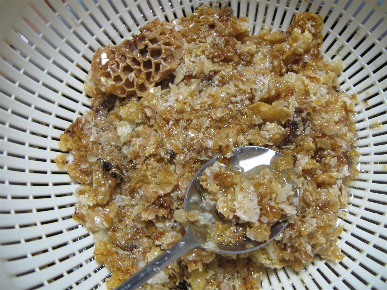 蜂蜜のゴミ1